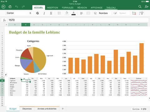 Excel-iPad