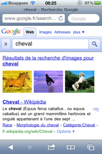 IMG 0279 200x300 - L'easter Egg de Google dans Safari Mobile.