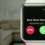Keynote : ce qu'il faut retenir sur l'Apple Watch