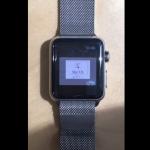 Insolite : une Apple Watch tourne sous Mac OS 7.5.5