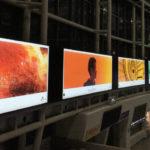 Corée du Sud : Apple s'apprête à y ouvrir sa première boutique