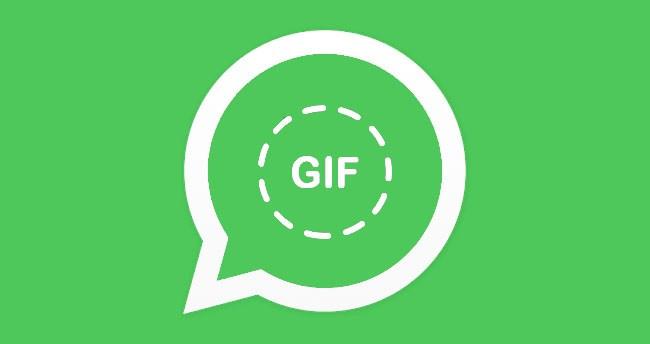 WhatsApp sur iPhone permet de créer & d'envoyer des GIF