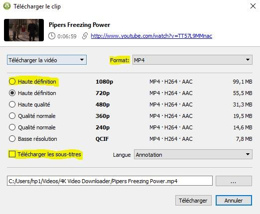 4k video downloader 3 - 4K Video Downloader : télécharger des vidéos YouTube gratuitement