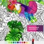 App du jour : Tayasui Color (iPhone & iPad - 3,99€)