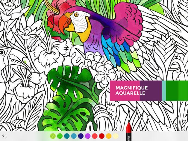 tayasui color - App du jour : Tayasui Color (iPhone & iPad - 3,99€)