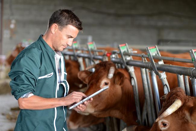Appli Selenca : un bilan et des solutions de sécurité agricole en quelques clics